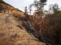 Selva quemada abajo y erosión de suelo después a partir de una estación seca de la monzón fotos de archivo