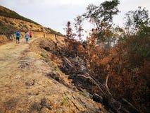 Selva quemada abajo y erosión de suelo después a partir de una estación seca de la monzón imágenes de archivo libres de regalías