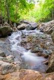 Selva tropical tropical de la cascada de Huai yang en parque nacional foto de archivo libre de regalías