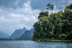 Selva tropical del sok de Khao, Tailandia Imagen de archivo