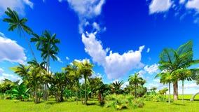 Selva tropical durante uma rendição do dia 3d Fotografia de Stock Royalty Free