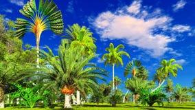 Selva tropical durante uma rendição do dia 3d Fotos de Stock Royalty Free