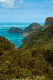Selva tropical en South Pacific Imagenes de archivo