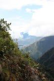 Selva tropical en la región de Yungas, Bolivia Foto de archivo