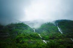 Selva tropical en un centro de la India Bosque verde hermoso con lluvia Cascadas y visión asombrosa desde el camino foto de archivo libre de regalías