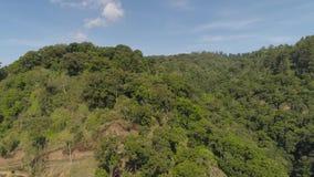 Selva tropical y montañas tropicales del paisaje almacen de metraje de vídeo