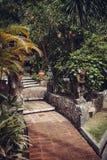 Selva y arquitectura del Balinese Foto de archivo