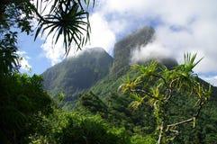 Selva y montañas de Moorea imagenes de archivo