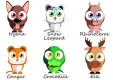 selvagem Animais engraçados ajustados para o uso como as etiquetas, imagens nos livros, Imagem de Stock