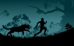 Selvagem Running Imagens de Stock