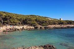 Selvaggio di Oporto - Puglia, Italia Fotografia Stock Libera da Diritti