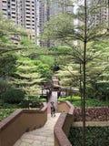 Selvas da cidade imagem de stock royalty free