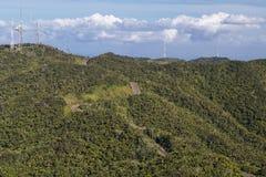 Selvas em torno de Cerro de Punta, Porto Rico, o ponto o mais alto Foto de Stock