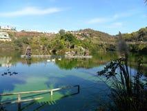 Selwo Andalusia Zdjęcie Stock