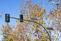 Semáforos accionados solares Fotografía de archivo libre de regalías