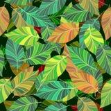 Sem emenda. As folhas e os ramos. ilustração do vetor