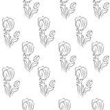 Sem emenda com tulipas monocromático Fotos de Stock