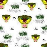 Sem emenda de retrato sabre-dentado do tigre no fundo branco w ilustração royalty free