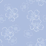 Sem emenda floral Fotos de Stock Royalty Free