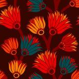 Sem emenda floral do vintage Imagens de Stock Royalty Free