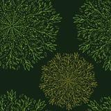 Sem emenda-teste--laço-flores ilustração royalty free