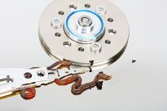 Sem-fim e vírus do computador Fotografia de Stock Royalty Free
