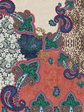 Paisley embroidery colors texture design. Animal print jeans baroque geometric stock image