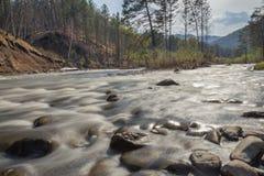 Sema山河,阿尔泰共和国,俄罗斯 库存照片