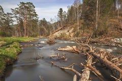 Sema山河,阿尔泰共和国,俄罗斯 免版税库存照片