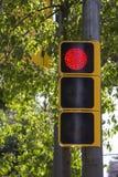 Semaforo rosso Immagine Stock