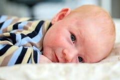 Semaine de la vie d'un nouveau-né Image libre de droits