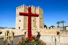 Semaine sainte Photos libres de droits