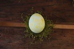 Semana Santa Huevos pintados pinturas, hierba foto de archivo
