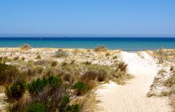 Semaphore Dunes Royalty Free Stock Photo