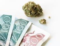 Seme dei soldi della cannabis Fotografia Stock Libera da Diritti