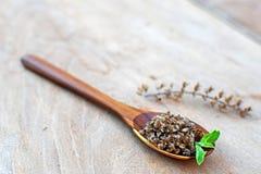 Seme del basilico sul cucchiaio di legno immagine stock libera da diritti