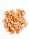 Seme del cereale Immagine Stock