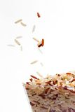 Seme del riso fotografia stock libera da diritti