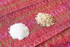 Seme del riso di agricoltura Immagini Stock Libere da Diritti