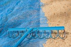 Seme del riso di agricoltura Immagine Stock