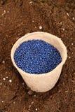 Seme della semina del seme di ravizzone Immagini Stock Libere da Diritti