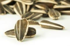 Seme di girasole crudo Fotografia Stock Libera da Diritti