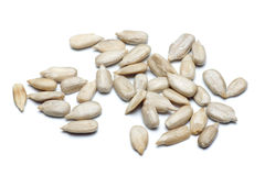 Seme di girasole isolato su bianco Immagini Stock Libere da Diritti