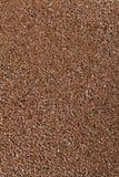 Seme di lino Fotografia Stock