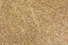 Seme di lino a terra Fotografia Stock