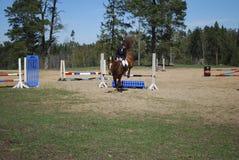 Seme/Letonia - 1 de mayo de 2018: El jinete en caballo salta sobre barreras en competencias en el salto Foto de archivo