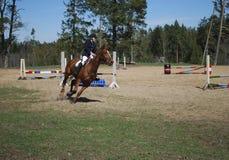 Seme/Letonia - 1 de mayo de 2018: El jinete en caballo salta sobre barreras en competencias en el salto Foto de archivo libre de regalías