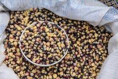 Seme viola del cereale immagine stock