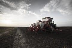 Semeando colheitas em campos agr?colas na mola imagem de stock
