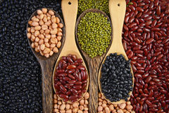 Semeia o feijão do beansBlack, o feijão vermelho, o amendoim e o feijão de Mung útil para a saúde nas colheres de madeira no fund Imagem de Stock Royalty Free